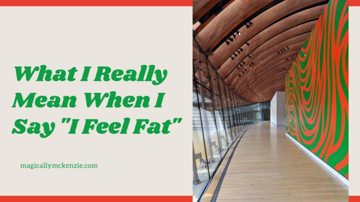 "What I Really Mean When I Say ""I FeelFat"""
